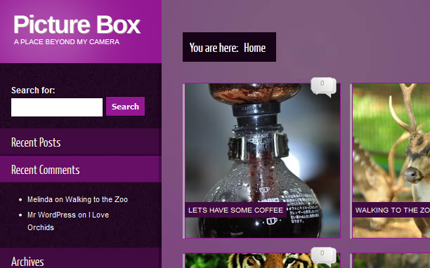 Picture Box - Purple