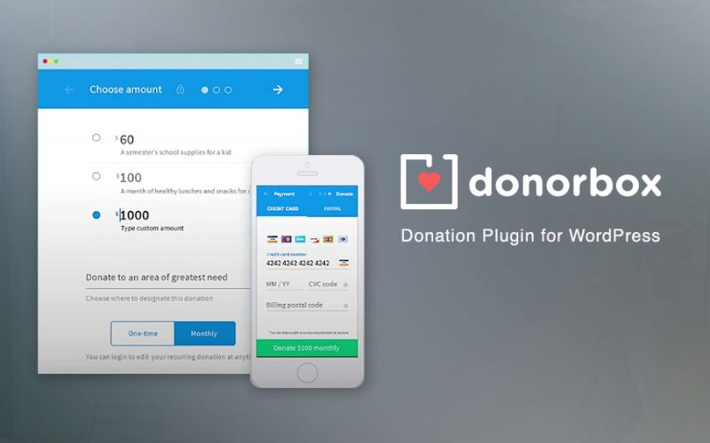 Choosing a Donation Plugin: Donorbox Review